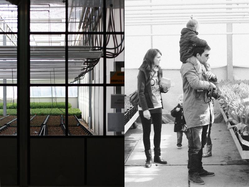 open greenhouse 3 :: la-fete.nl